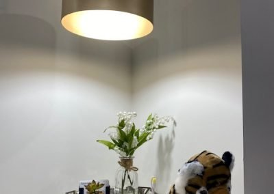 Dentist Hoppers Crossing Sayers Dental Aesthetics Implants Dental Office Decor